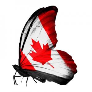 بهترین منابع آژمون سلپیپ برای ورد به کشور کانادا